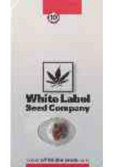 White Gold 100% - White Label Seeds - (5) феминизированные семена конопли