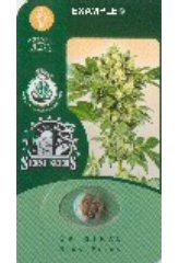 California Indica - Sensi Seeds - регулярные семена конопли