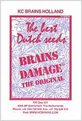 Brains Damage (5) order at Hipersemillas
