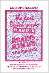 Comprar Brains Damage 100% en Hipersemillas
