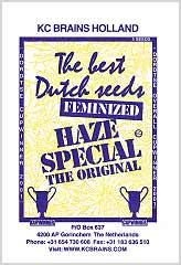 Comprar Haze Special 100% en Hipersemillas