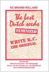 Compre White K.C. 100% em Hipersemillas