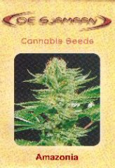 Comprar White Widow 100% (5) en Hipersemillas
