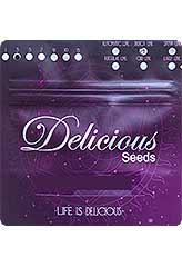 Delicious Candy AUTO 100% (5) bei Samenwahl sicher online bestellen und kaufen