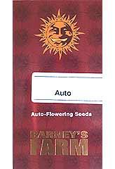 Pineapple Express AUTO 100% (5) bei Samenwahl sicher online bestellen und kaufen