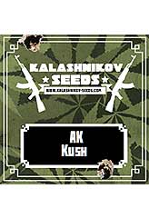 AK Kush 100% (3) order at Hipersemillas