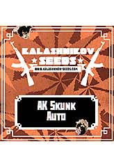 AK Skunk AUTO 100% (5) order at Hipersemillas