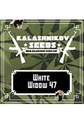 Comprar White Widow 47 100% (3) en Hipersemillas