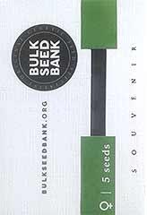Original Orange Bud 100% (5) order at Hipersemillas