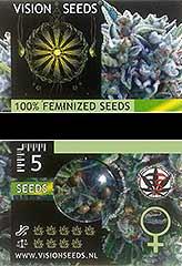 Brainkiller Haze 100% (5) order at Hipersemillas