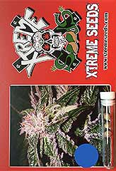 Sour Ryder ASB Auto 100% (3) order at Hipersemillas