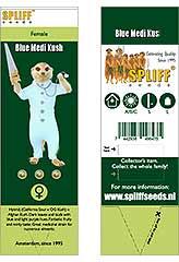 Comprar Blue Medi Kush 100% (3) en Hipersemillas