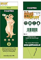 Comprar Crystal White 100% (3) en Hipersemillas