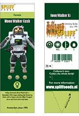 Moon Walker Kush 100% (3) order at Hipersemillas