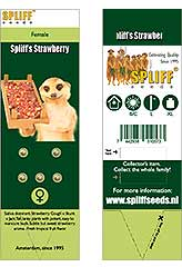Spliff's Strawberry 100% (5) order at Hipersemillas