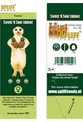 Sweet 'n Sour Indoor 100% (3) order at Hipersemillas
