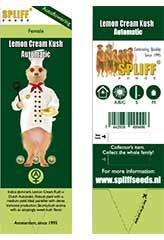 Lemon Cream Kush Auto 100% (3) order at Hipersemillas
