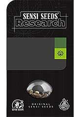 Sensi #11  100% (3) bei Samenwahl sicher online bestellen und kaufen