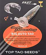 Big Auto Tao (5) order at Hipersemillas
