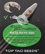 Haze Auto Tao (10) order at Hipersemillas
