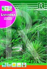 Livistona (Australische Latania) bei Samenwahl sicher online bestellen und kaufen