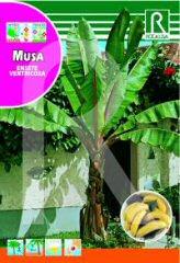 Musa (Bananas) order at Hipersemillas