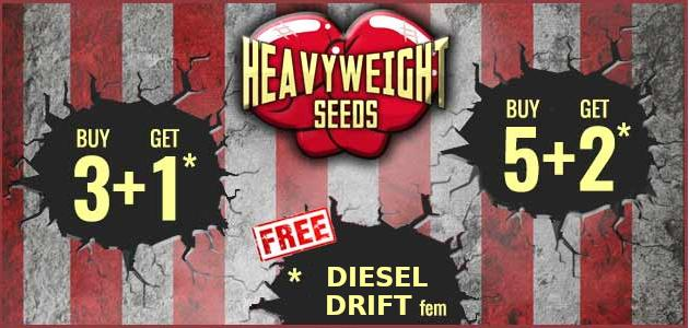 Promotion Heavy Weight Seeds